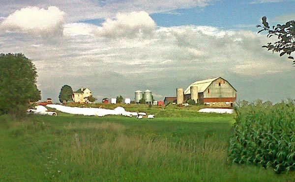 One of the remaining farms on the Rouge agricultural lands.