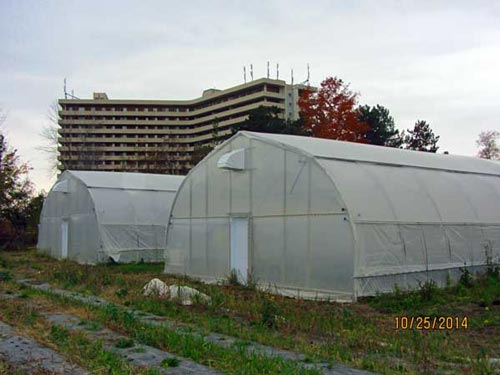 New urban greenhouses at Black Creek Community Farm that I advised on.